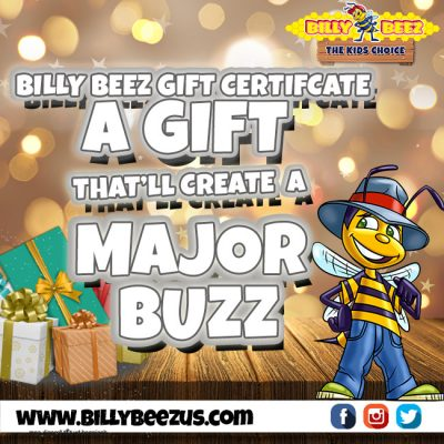billy beez holiday gift certificates palisades center. Black Bedroom Furniture Sets. Home Design Ideas